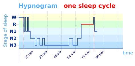 rem schlaf sleep cycle