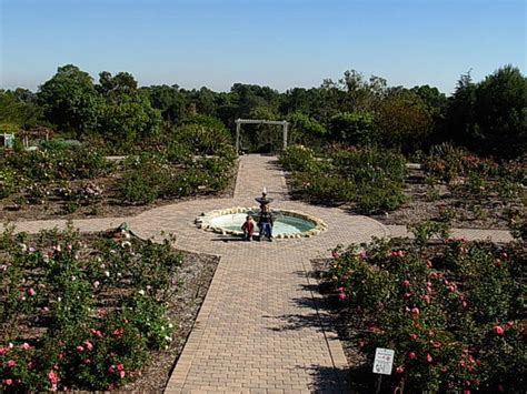 The Top 10 Things To Do Near Wilson Park Torrance Torrance Botanical Gardens