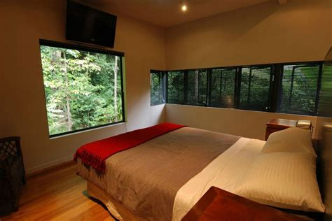 treehouse bedroom ideas tree house design ideas for modern family inspirationseek com
