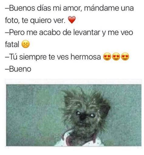 imagenes te quiero ver mi amor 25 best memes about buenos dias buenos dias memes