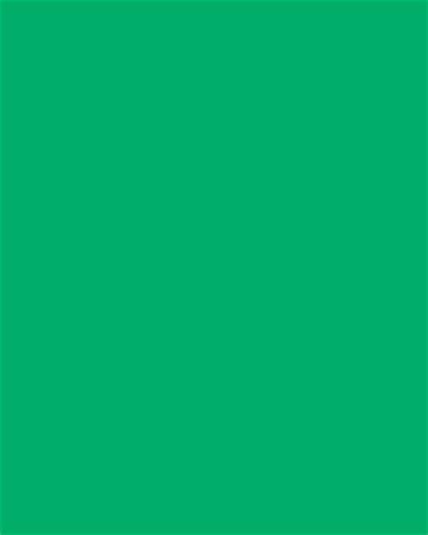 Polose Hijau Semestinya Green 304 green canvas backdrop 7x8 studio dynamics