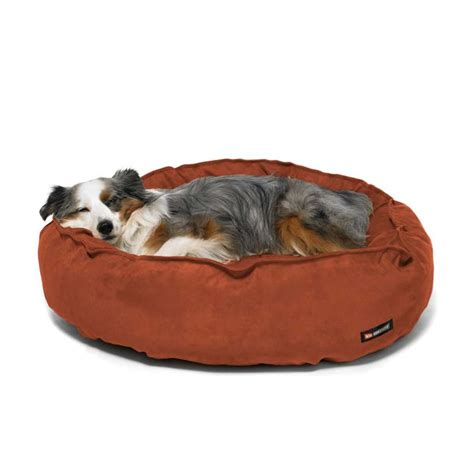 huge dog beds big shrimpy original pet bed beds pet beds and dog beds