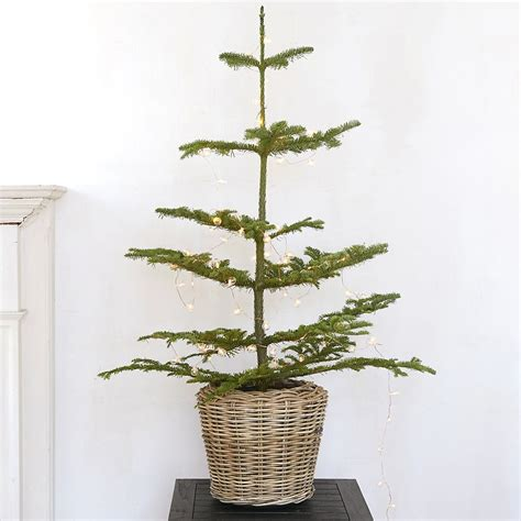 how to stop my live christmas tree from lening 10 easy pieces tabletop live trees gardenista