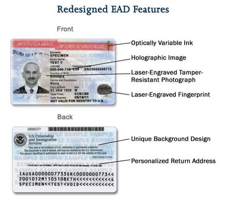 letter template to uscis for lost ead card ead expedite process getting work authorization faster i