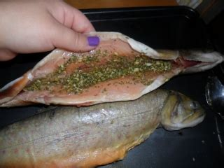 cuisiner de la truite truites enti 232 res farcies recettes du qu 233 bec