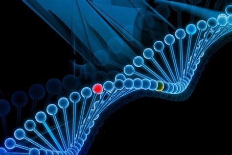 imágenes imágenes vaqueras ima evarsity cancer genetics ima evarsity