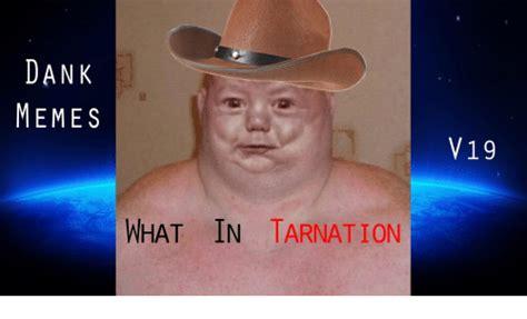 search tarnation memes  meme