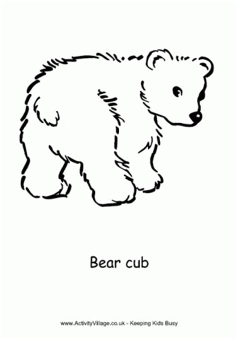 coloring page bear cub bear colouring page