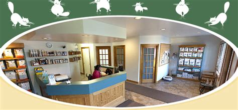 Garden City Vet Clinic by Garden City Cat Hospital Cat Care Veterinarian St