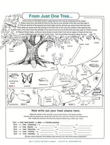 ecology worksheets for high abitlikethis