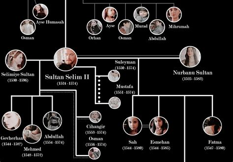 ottoman dynasty family tree ottoman sultans family tree mei editor s ottoman sultans