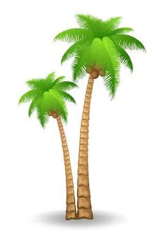palm trees tattoo ideas palm trees clip art  palms