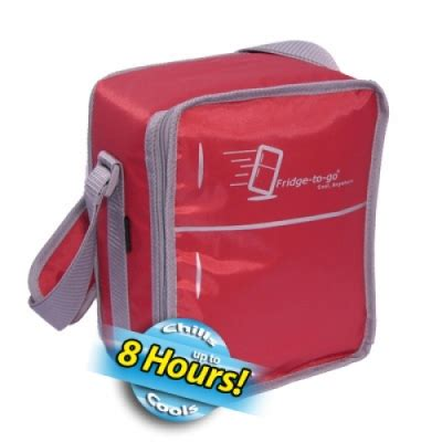 Tas Pendingin Cooler Bag Lunch cooler bag mini fridge to go ftg 3000 asibayi