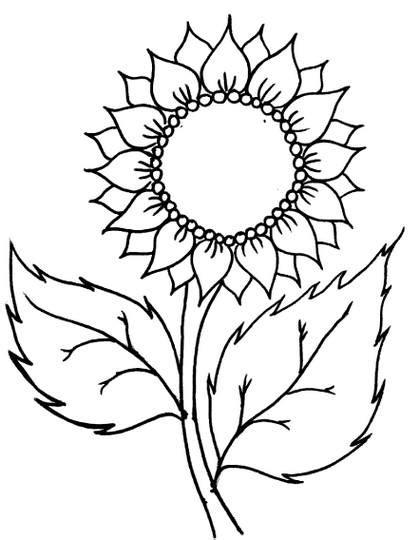 sketsa gambar bunga teratai hitam putih