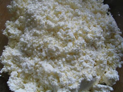 Cottage Cheese From Sour Milk by Cottage Cheese From Sour Milk Center