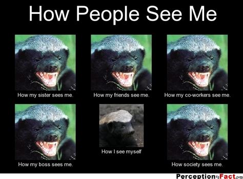 How I See Meme - how people see me what people think i do what i really do perception vs fact