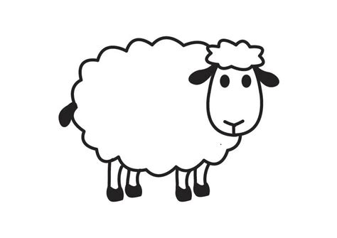 black sheep coloring page pages o draw a cartoon sheep step 5 animals sheeps free
