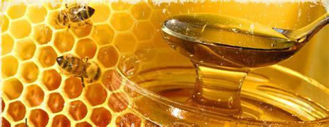 miele alimento ambra 2016
