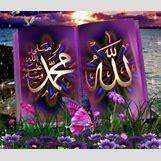 Beautiful Allah Muhammad Wallpaper   300 x 256 jpeg 36kB