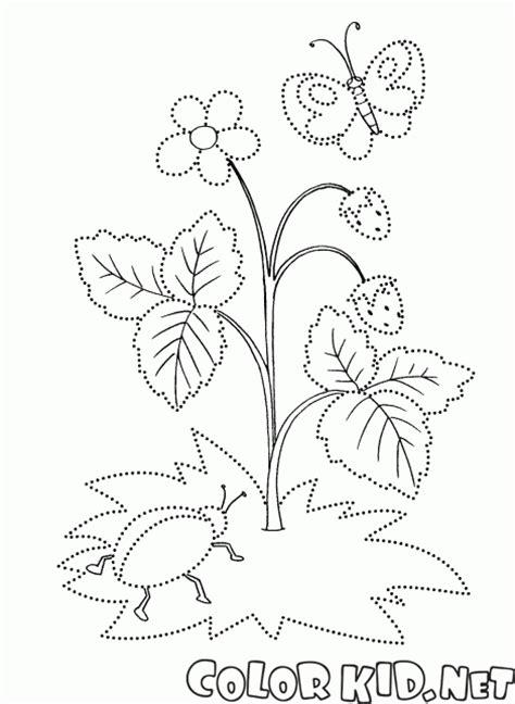 Agak Waras dibujo para colorear floraciones fresa verano