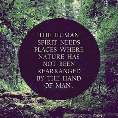 nature and the human soul cultivating wholeness and community in a fragmented world books quotes about resilience of the human spirit quotesgram