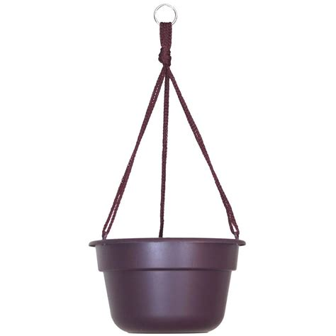 Home Depot Hanging Ls by Bloem 12 In Exotica Dura Cotta Plastic Hanging Basket
