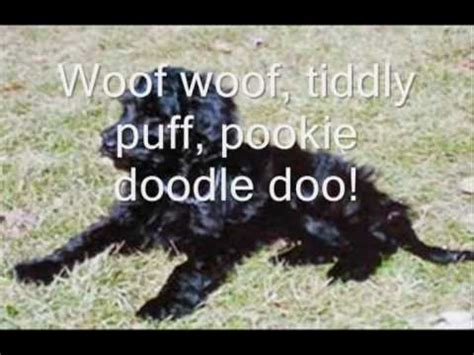 pookie doodle puppy words pookie doodle puppy