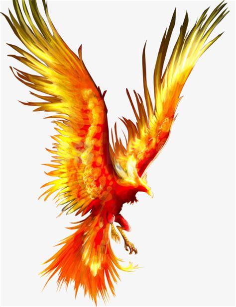 dessin de phoenix dessin mythe oiseau image png pour le