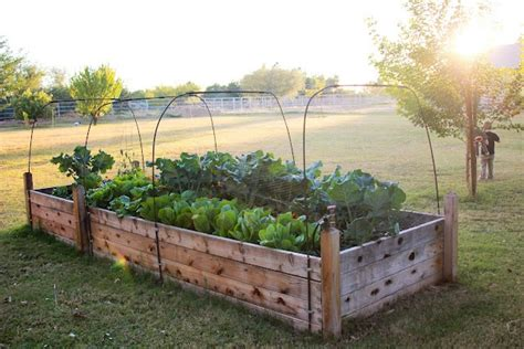 beautiful raised garden beds beautiful raised bed house stuff