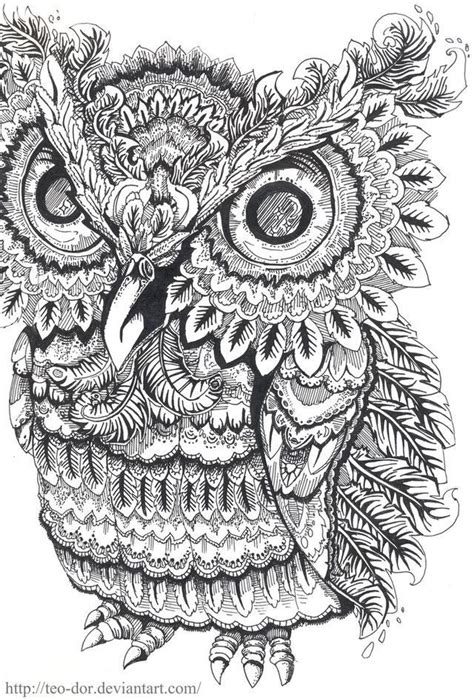 coloring pages adults owl k 233 ptal 225 lat a k 246 vetkezőre owl coloring pages for adults