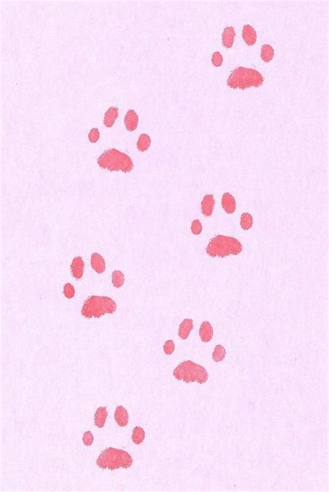cat paw print rubber st paw prints antiques and thoughts on