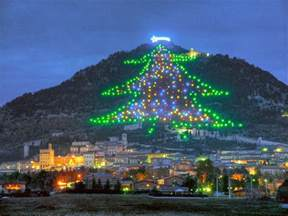 world s largest christmas tree gubbio all numbers