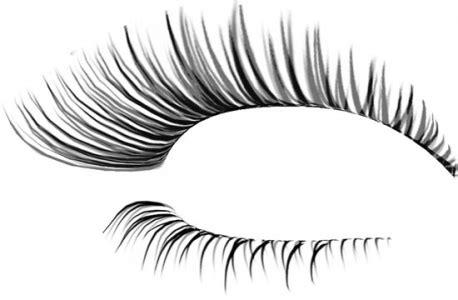 Eyelash Photoshop Template Designs Eyelash Website Templates