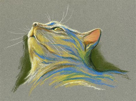 Murah Poster Color Yellow Ochre Cat Poster cat looking up to heaven pastel by mm
