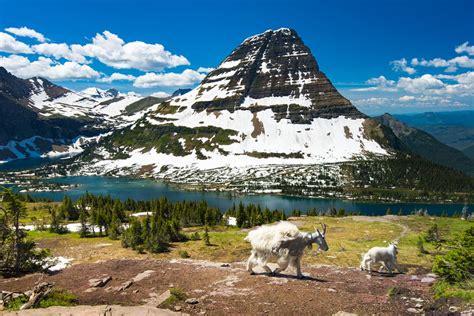 glacier national park 9 of the best glacier national park hikes the planet d