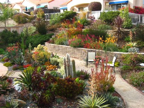 Mediterranean Backyard Landscaping Ideas Tiered Drought Tolerant Pismo Landscape Mediterranean Landscape Other Metro By