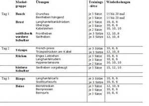krafttraining frauen zu hause mit dem trainingsplan muskelaufbau f 252 r anf 228 nger zum erfolg