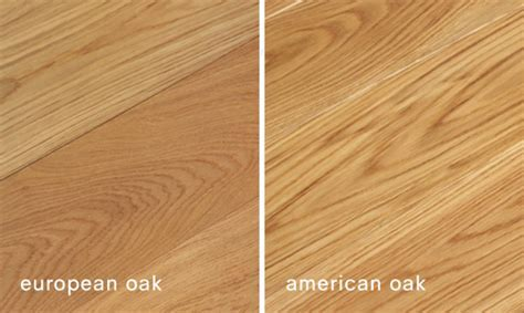 European Oak vs American Oak   News