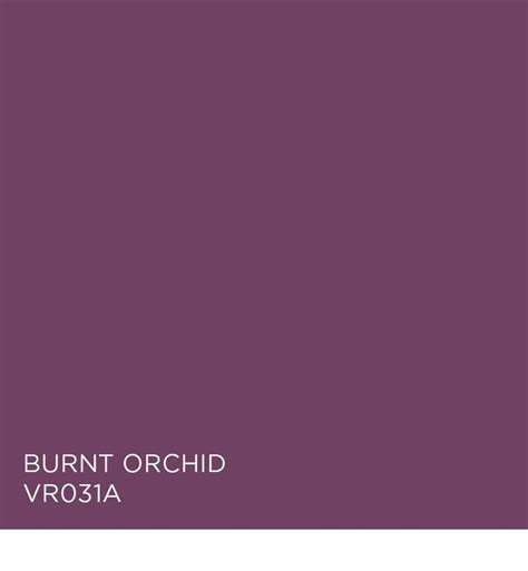 burnt orchid vr031a available at ace colors in focus purple orchids