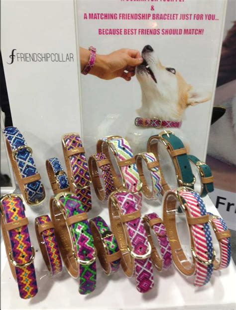 friendship collar the 9 coolest things i found at superzoo 2015 catster