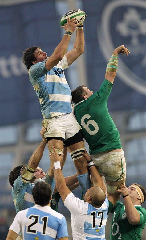 ireland   argentina  verdict rugby world