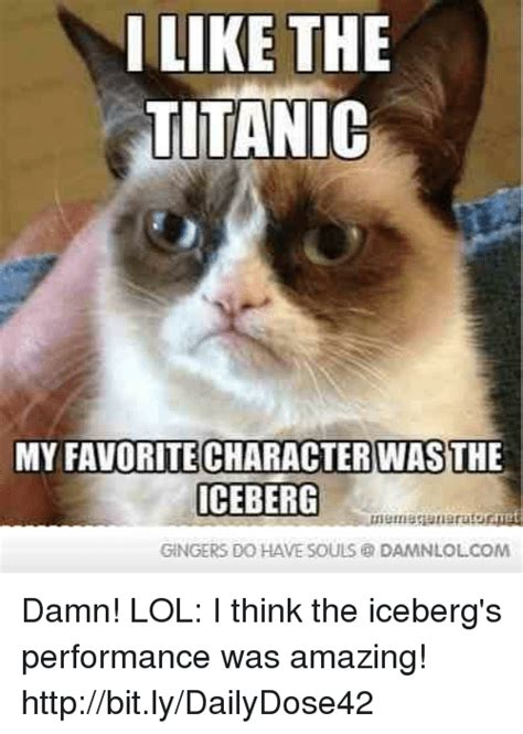 Damn Lol Memes - i like the titanic my favoritecharacter was the iceberg