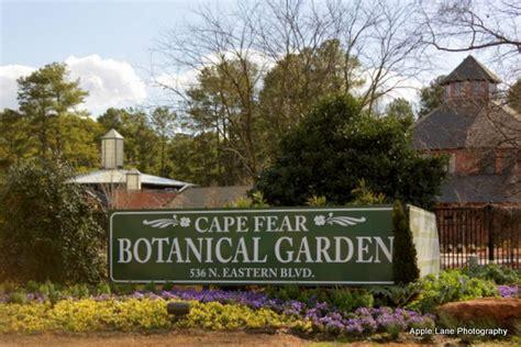 Cape Fear Botanical Garden On Carolina Wings Winter Walk Through Cape Fear Botanical Gardens