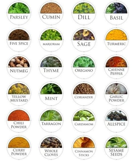 Spice Jar Labels To Print On Blank Round Labels Size 1 67 Circle Laser And Inkjet Printer Tincture Label Template