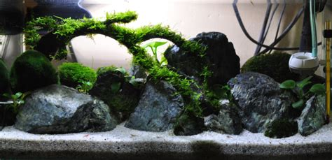 Lu Aquarium Model Jepit bikin a site