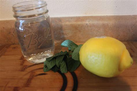 Metabolism Boosting Detox Drinks by Metabolism Boosting Detox Drink Recipe Budget Savvy