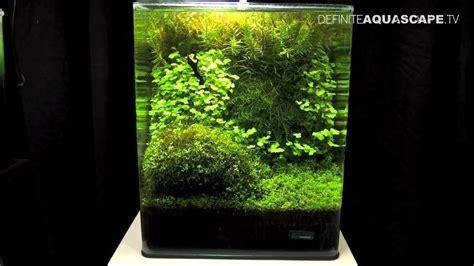 nano aquascaping aquascaping the art of the planted aquarium 2013 nano pt 4 youtube