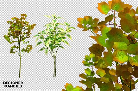 foliage  bundle dealjumbocom discounted design bundles  extended license