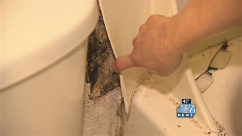 mold in bathroom health symptoms mold in bathroom health symptoms cleaning mildew from