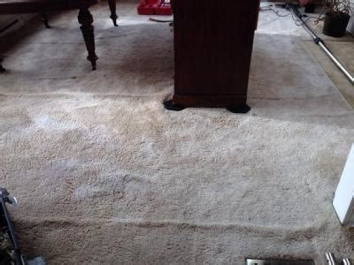 upholstery cleaning victoria bc full service carpet upholstery cleaning company
